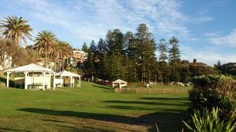 Bronte park